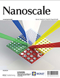 cover_image_nanoscale_2013